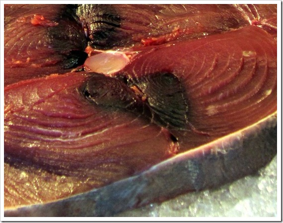 Tonno (tuna) steaks, ready for grilling