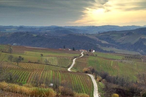 Explore Italy with Dall'Uva