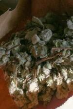 chinati-vergano-mauro-vergano-vermouth-chinato-2.jpg