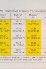 Barolo MGA production statistics on dalluva.com