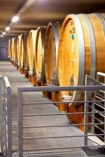 Produttori del Barbaresco aging room with Slavonian oak botte