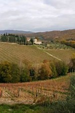 The Radda hills make some very special high-altitude Chianti Classico