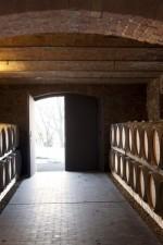 Ezio Cerruti's aging cellar