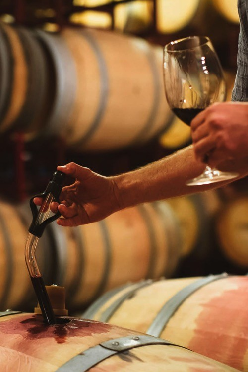 Artisan winemakers check their wines along the path to perfection