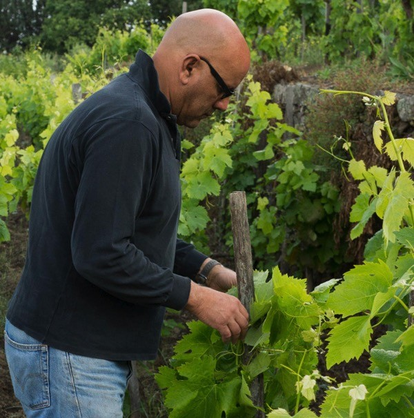 Ciro Biondi tending his Nerello Mascalese vineyard in Sicily