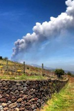 Wine making in the shadow of Mount Etna