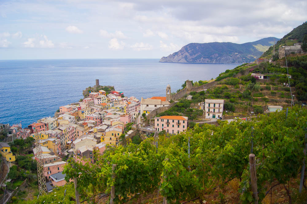 View of Vernazza from her terraced vineyards