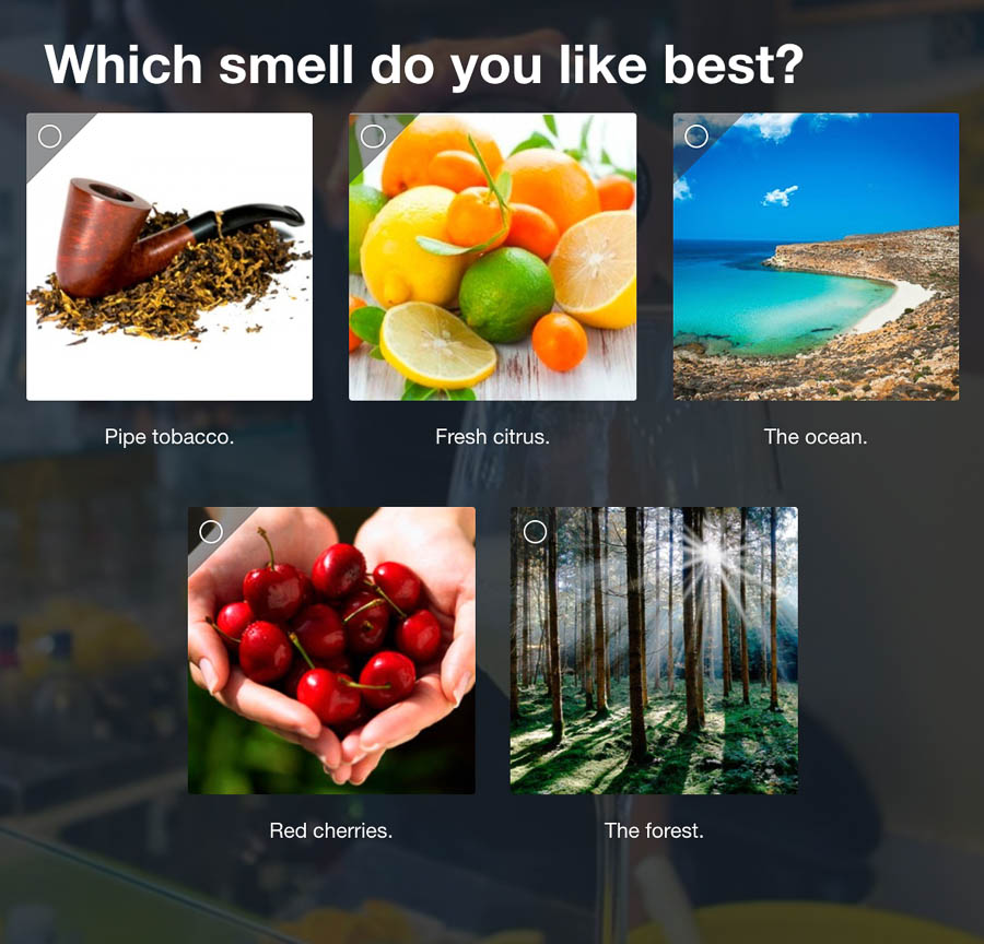 Question 6: Which smell do you like best?