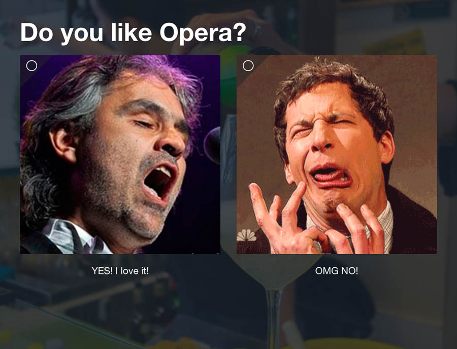 Question 7: Do you like Opera?